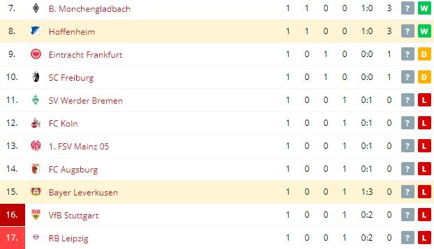 Bayer Leverkusen vs Hoffenheim Standings