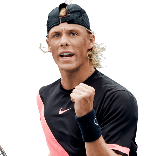 Denis Shapovalov  logo